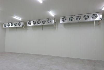 紅梅食品冷凍庫②